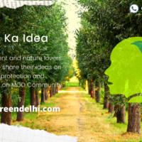 Delhi Ka Idea (1)